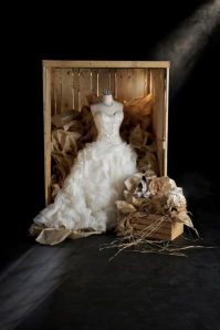 Wedding Gown in a Crate